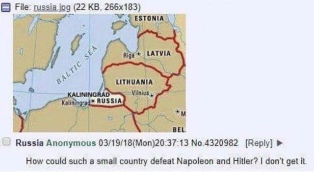 11333630.jpg