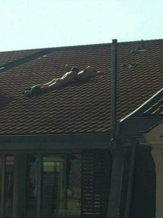 Соседи умеют удивлять