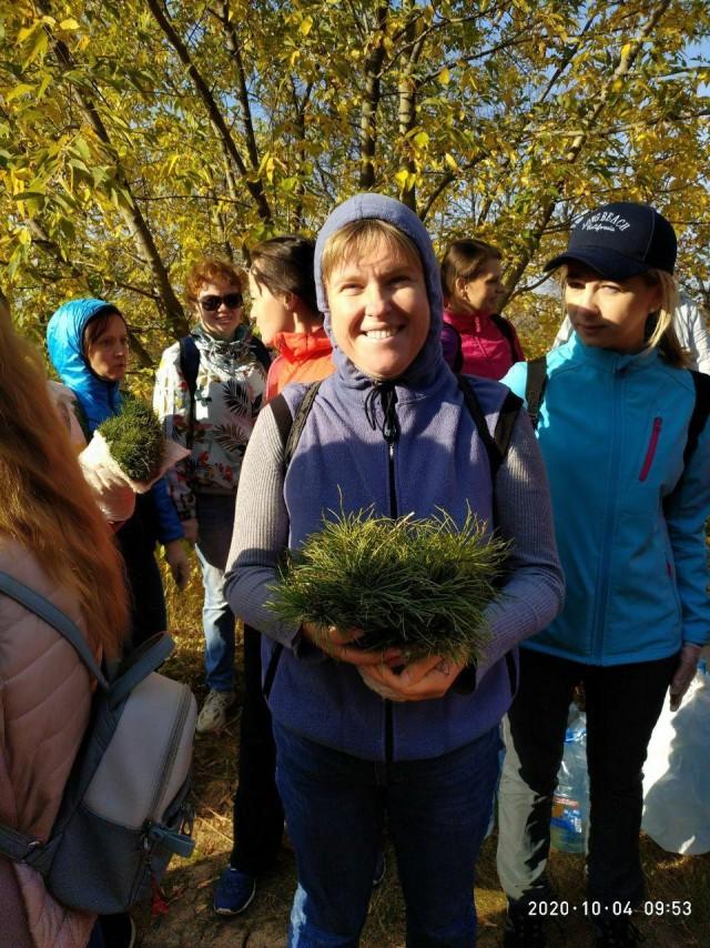 Посадили 3000 кедров в Нижнем Новгороде