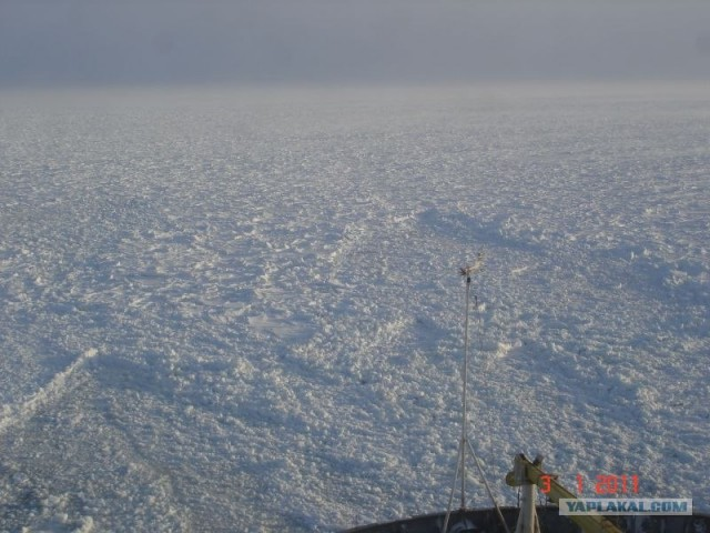Содружество (ледяной плен 2010-2011)