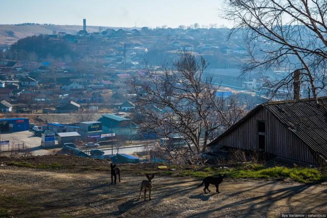 Как живет один из самых богатых российских городов