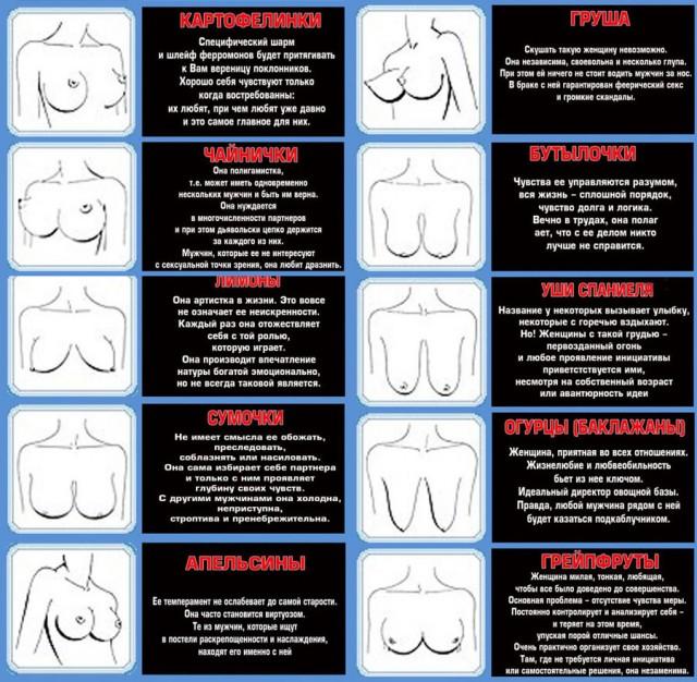 Женская грудь форма сосков фото