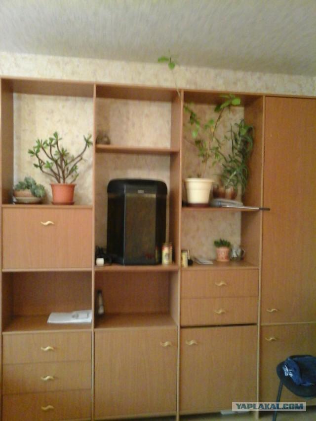 Отдаю мебель, Москва