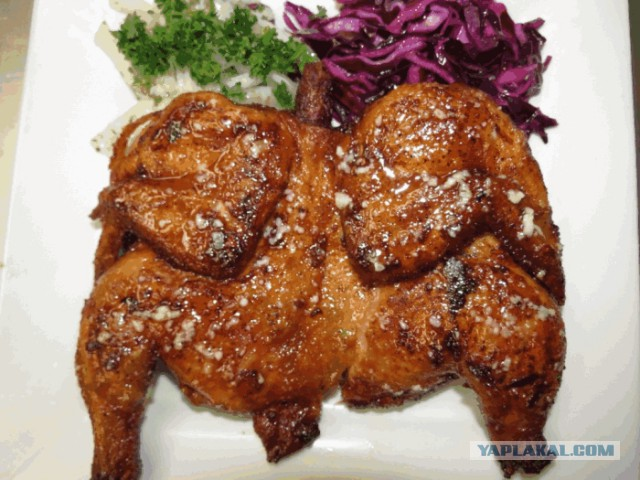 Цыпленок табака в рукаве в духовке с фото