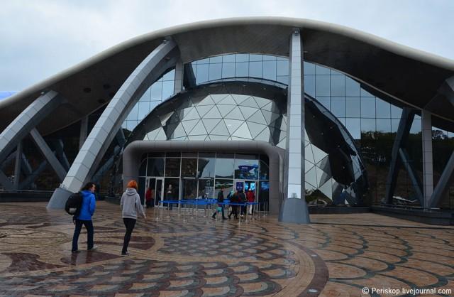 День 18. Владивостокский океанариум на острове Русский