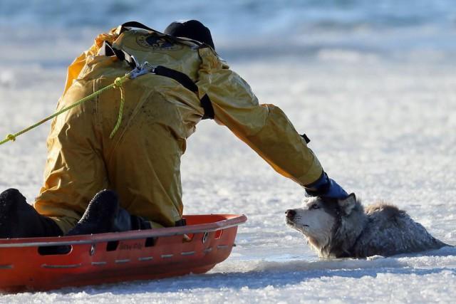 10 историй, которые доказывают, что мир спасет именно доброта