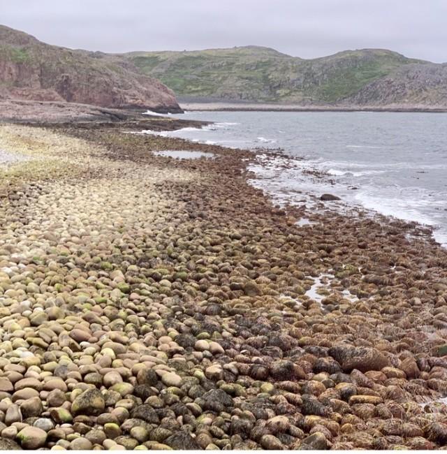 С виду самый обыкновенный галечный пляж