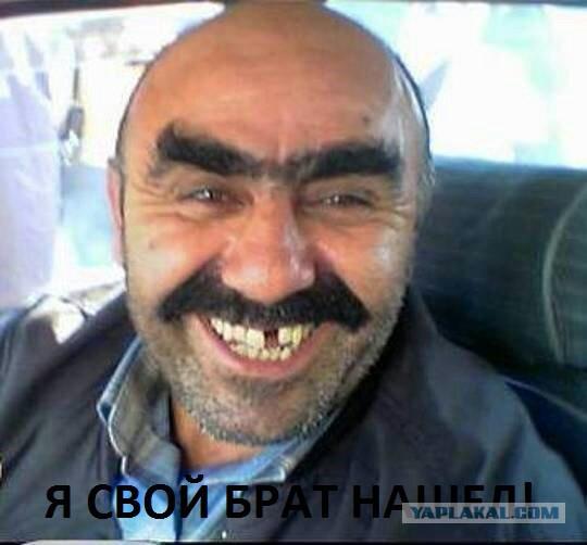 Он свой брат нашел)))