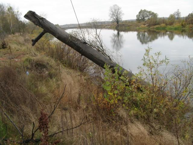 Десятки тысяч долларов на дне наших рек