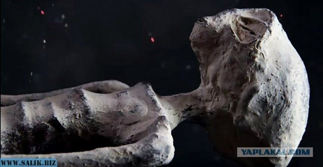 Детальный анализ мумий инопланетян найденных на плато Наска