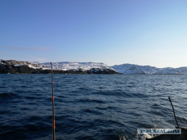 Почти утонули за Полярным кругом или отчет о рыбалке на Баренцевом море