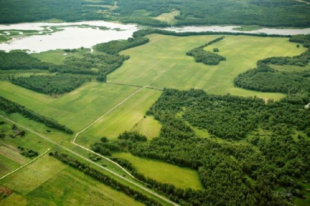 Москвич взял по программе «дальневосточный гектар» остров для квестов