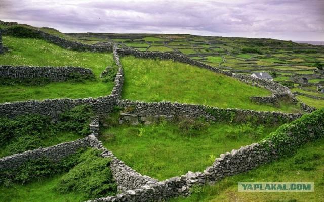 Каменные стены в Ирландии.