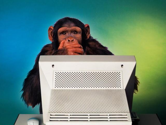 Ученые установили: человек, комментирующий в интернете, теряет до 38% интеллектуального потенциала