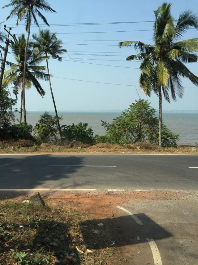 Поездка в Гоа. Февраль 2015