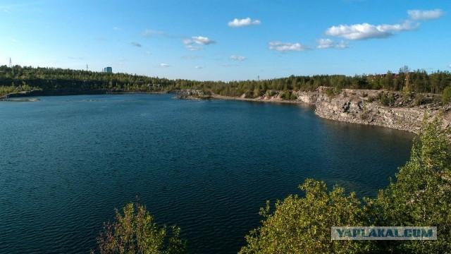 """Просим помощи у ЯП-сообщества! Администрация Петрозаводска уничтожает красивейший парк """"Каменный Бор""""!"""