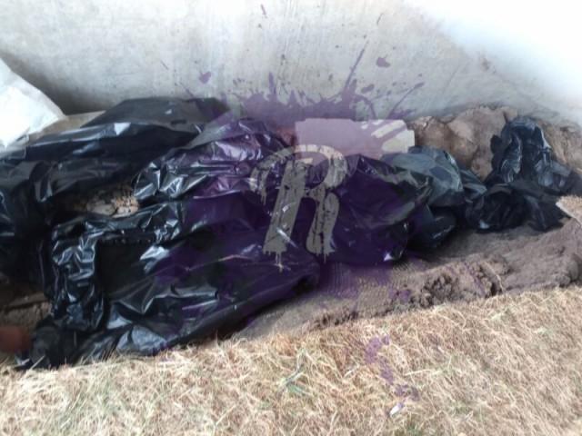 Возле больницы в Коммунарке найдены пакеты с кровью и медкартами умерших пациентов от Covid-19