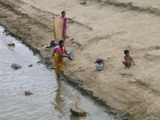 Индия 2007 - 2008 г.