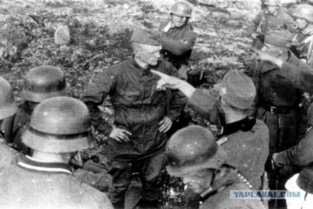 Мурманские поисковики нашли останки расстрелянных красноармейцев по фотографиям из немецкого архива