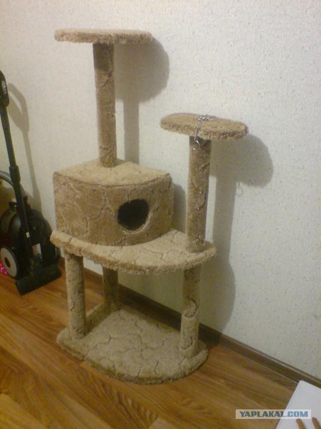Домики для кошек своими руками мастер класс 19