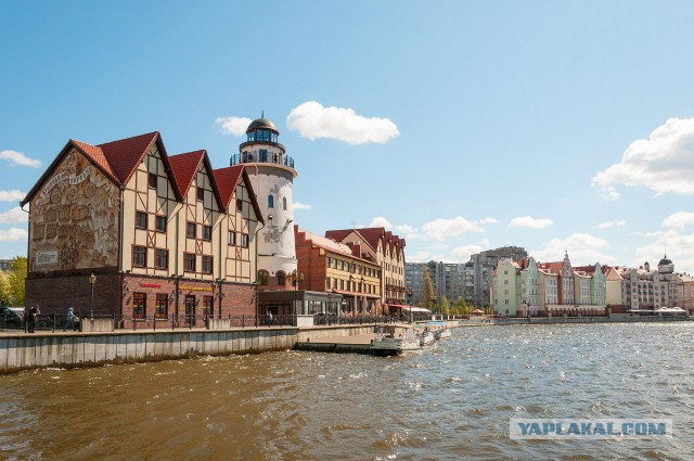 Незабываемый Калининград
