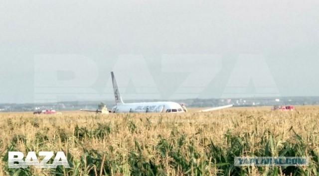 В Подмосковье пассажирский самолёт  Уральских Авиалиний экстренно приземлился в поле.