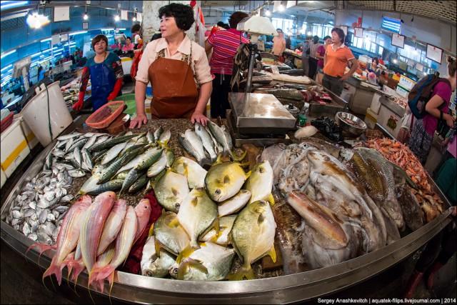 Импорт рыбы и морепродуктов из стран скандинавии и балтии : ооо торговый дом балтика : украина : бизнесинфо