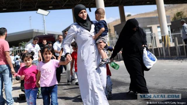 В Европе нашли «удобный» выход: отправить всех беженцев в Украину
