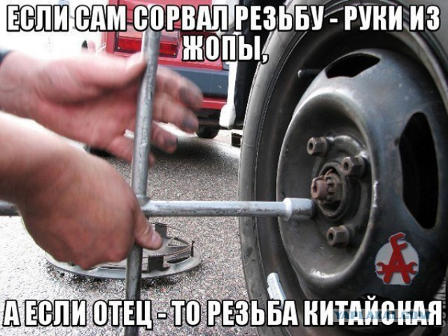 [Изображение: 7875631.jpg]