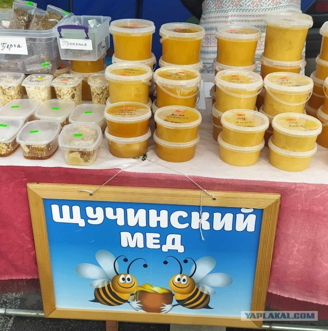 Посетил я сейчас Беларусь