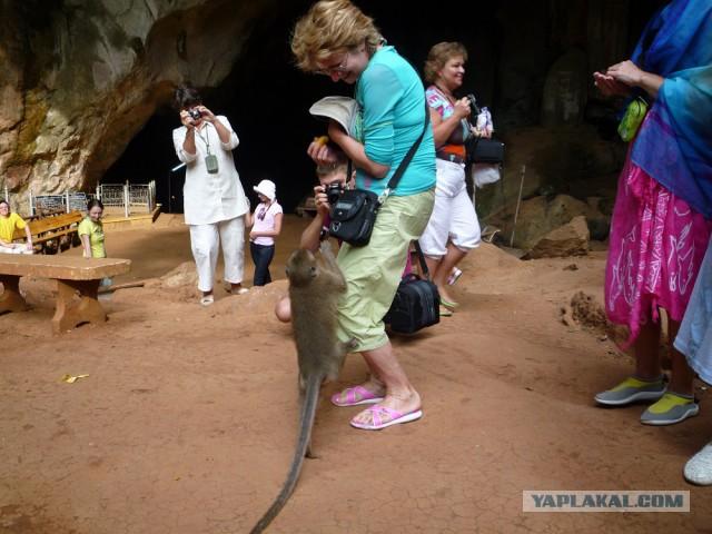 Как я съездил в Таиланд