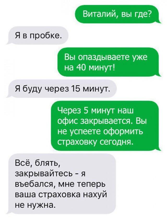 9465451.jpg