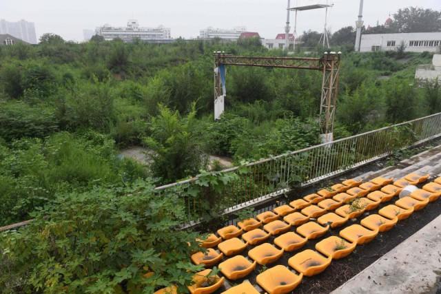 Через десять лет на стадионах Олимпийских Игр в Пекине растут деревья, а талисманы догнивают под открытым небом