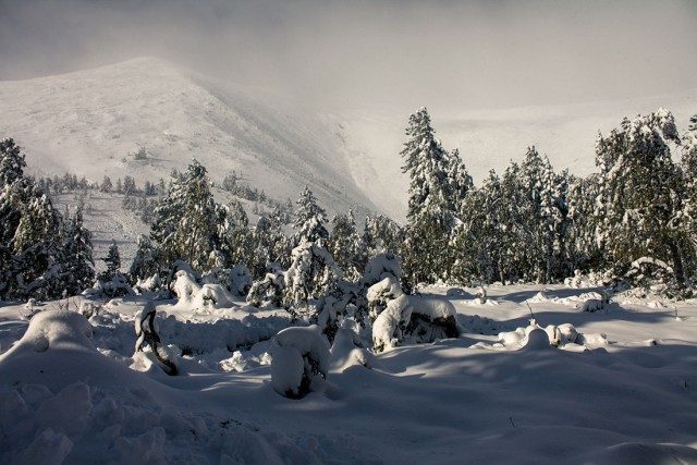 Суровый Урал. Снежный плен. (Безопасность в походе)