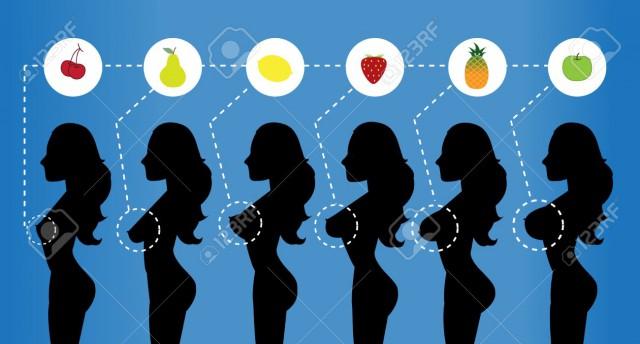 А теперь фруктосисечная классификация