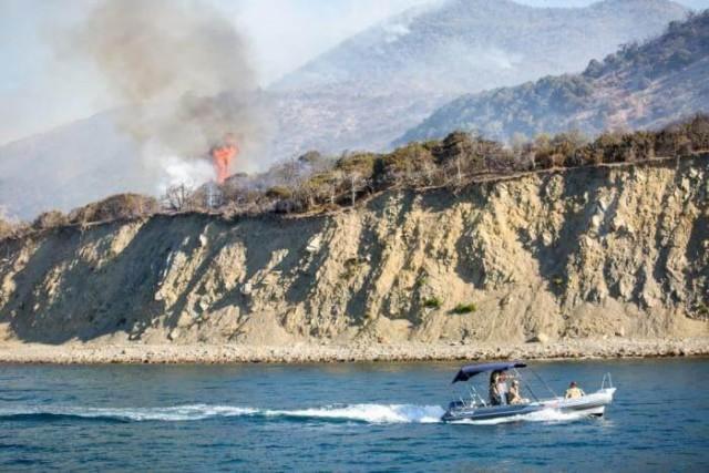 В Анапе капитаны катеров брали деньги с туристов за эвакуацию из горящего заповедника Утриш
