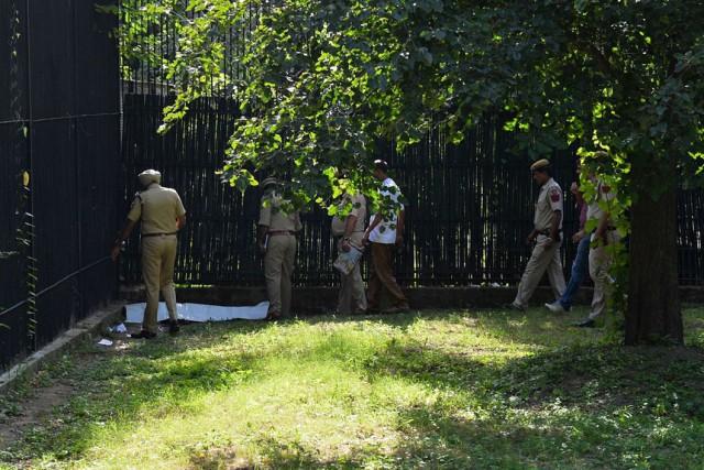 Белый тигр загрыз человека в зоопарке Индии