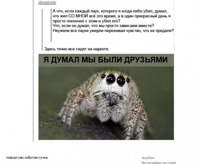 игры про паучков