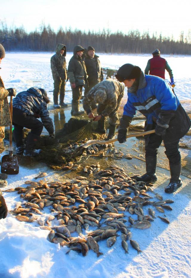 якутия зимния рыбалка