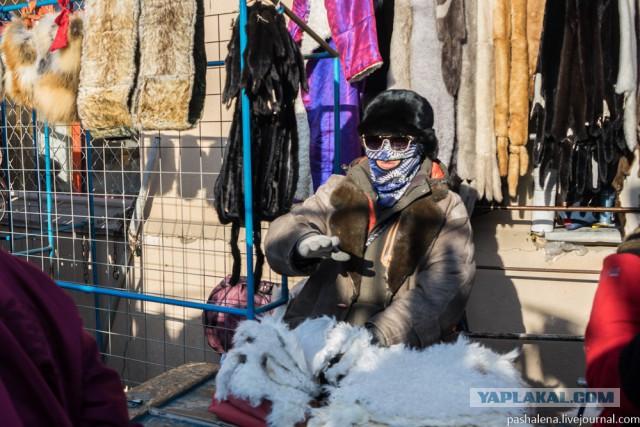 39 фактов и наблюдений из Монголии