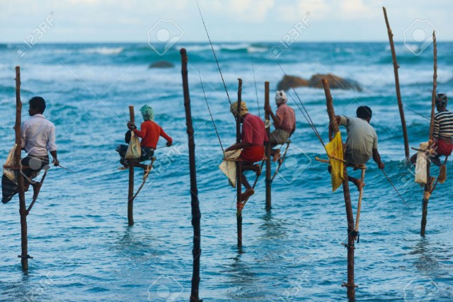 монахи ловят рыбу