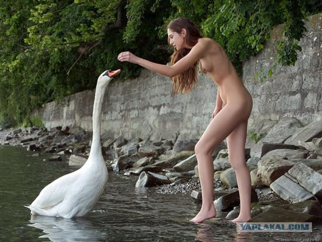 Секс девушек с животными 8.