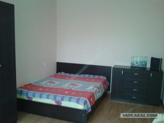 сдам 1 комнатную квартиру в Белгороде