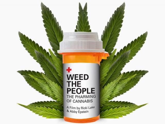 В России начали исследовать медицинскую марихуану