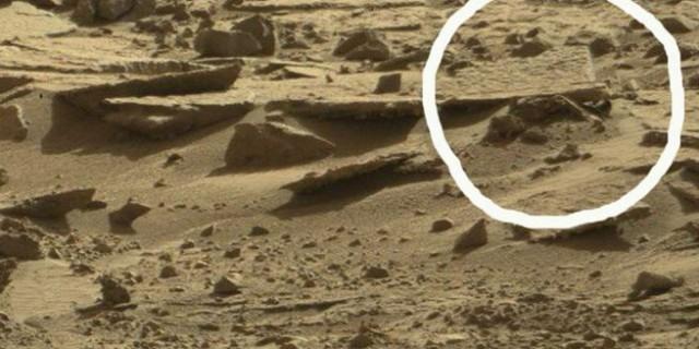 Уфологу удалось получить снимки трупа инопланетянина