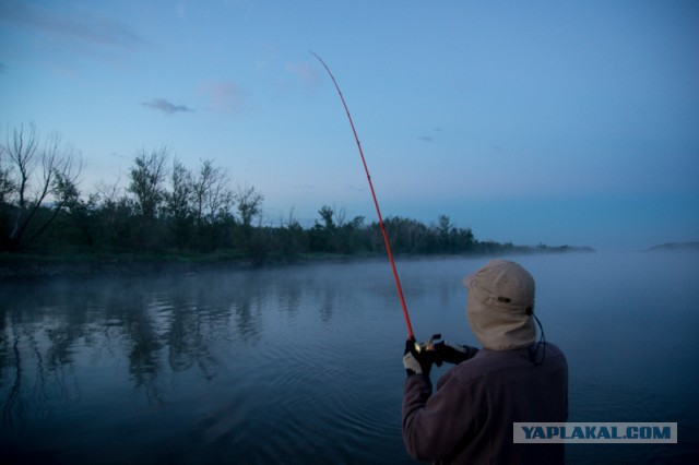 рыбалка на дону сетями