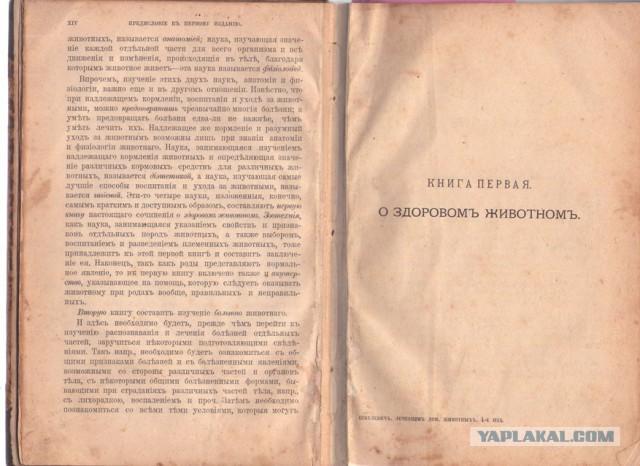 Антиквариат, книга.