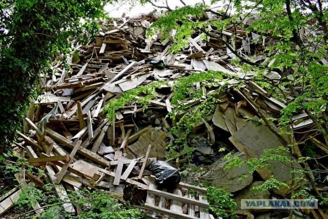"""В реликтовом лесу в Геленджике появилась """"патриаршья"""" свалка строительных отходов"""