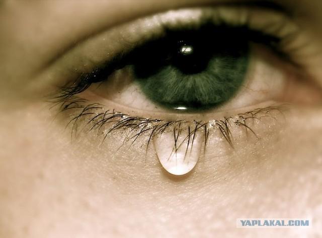 Структура человеческих слёз под  микроскопом