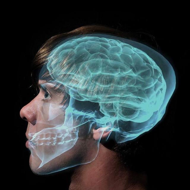 Что происходит у нас в голове?